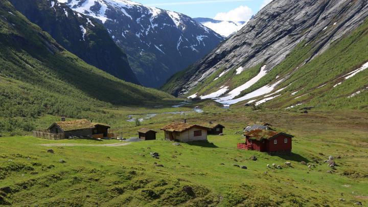 Dachbegrünung in Norwegen