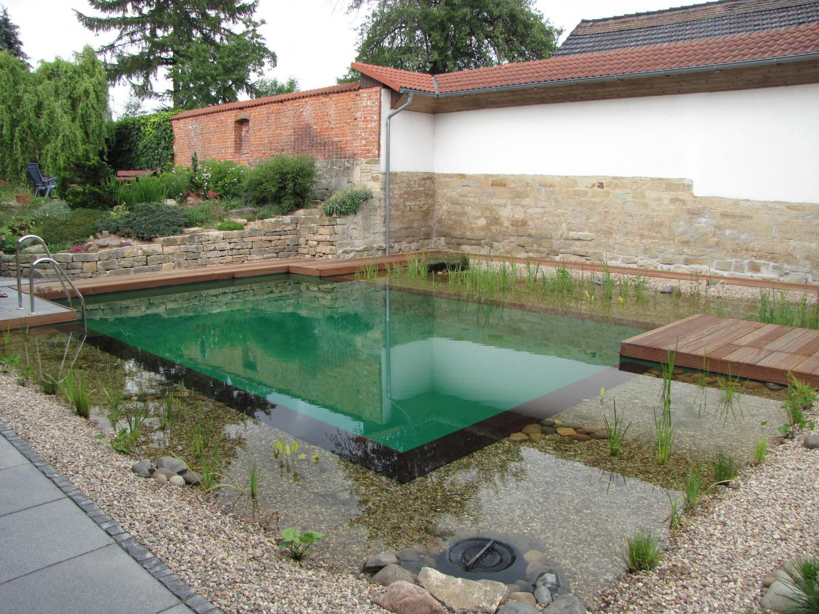 Privater schwimmteich in osterfeld re natur sachsen for Gartenbrunnen anlegen